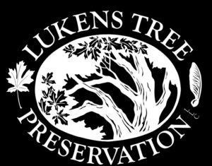 logo-lukens-tree