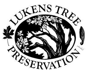 lukens tree